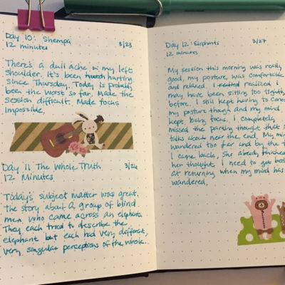 A Peek Inside My Meditation Journal